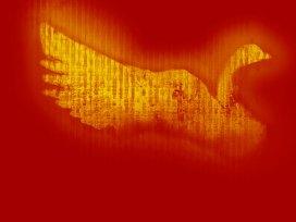 pentecost-wild goose
